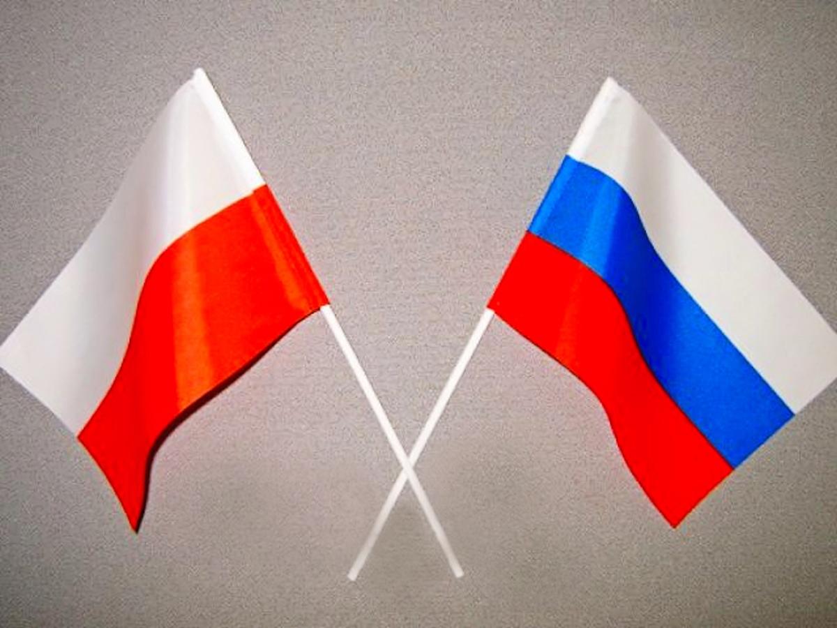 Влетевшем в столицуРФ самолете психически неуравновешенный избил польского дипломата
